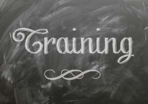 Language Training Trends