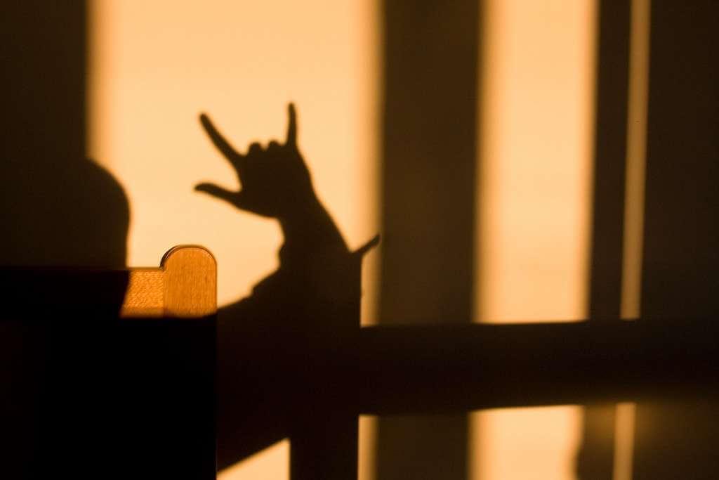 Sign Language Courses