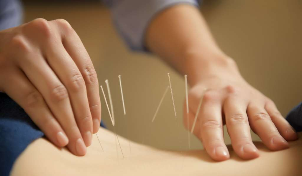 College of Five Element Acupuncture Free Information Morning