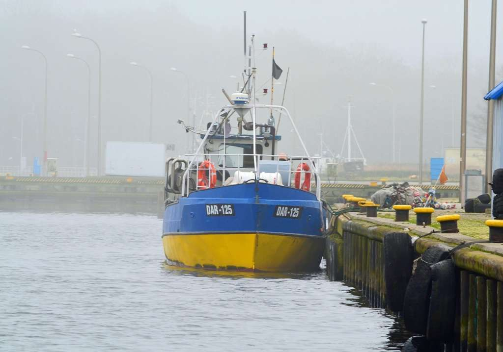 A career in the seafood industry with Bord Iascaigh Mhara (BIM)