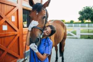 8 Reasons to take that Animal Science Course