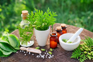 Homeopathy For Beginners Workshop