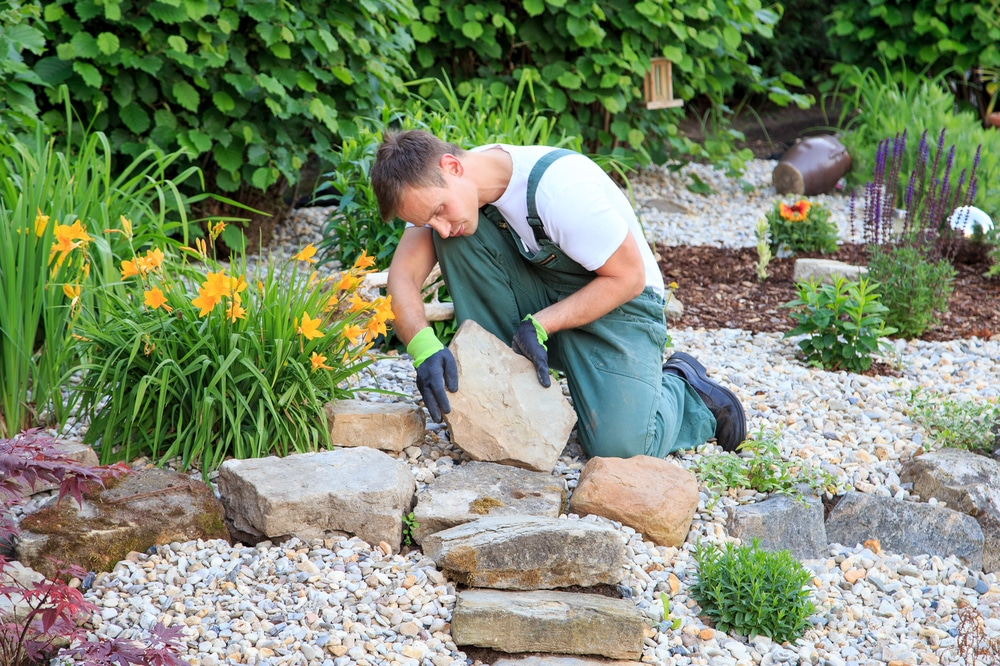 Learning All About Landscaping